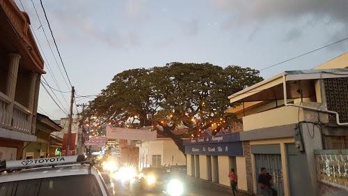 Foto de Banco de America Central